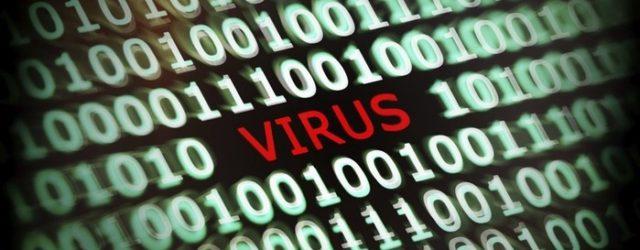 138113545 110417 1211 1 640x250 - Эпидемия в социальных сетях! Вирусные фотографии, которые стали знаменитыми благодаря Интернету